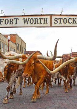 Fort Worth Landing